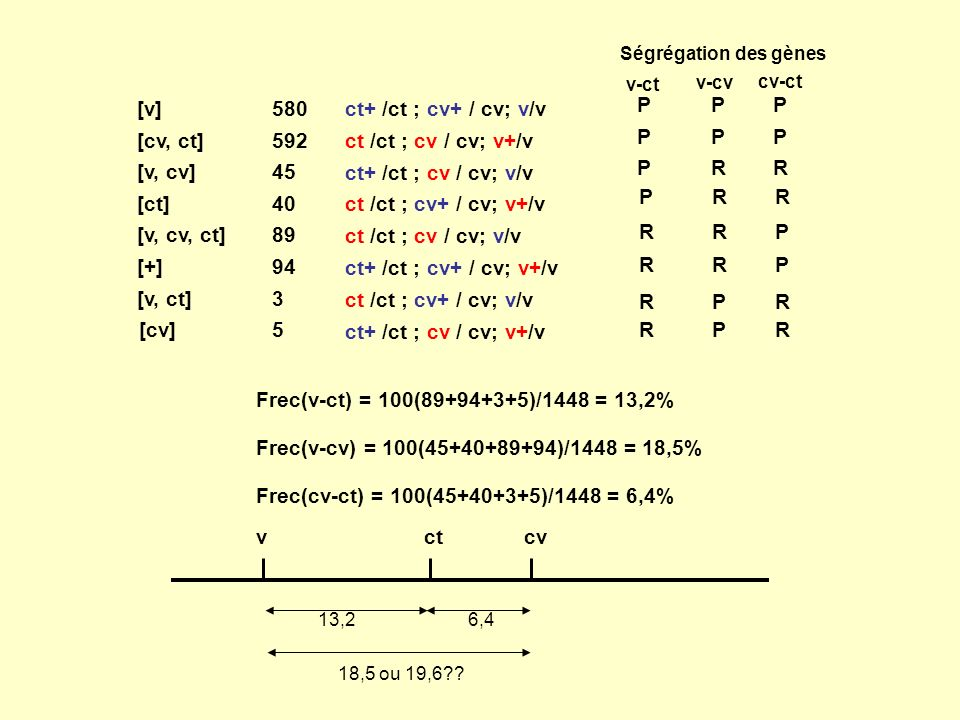 [v] [cv, ct] [v, cv] [ct] [v, cv, ct] [+] [v, ct] [cv] 580 592 45 40 89 94 3 5 ct+ /ct ; cv+ / cv; v/v ct /ct ; cv / cv; v+/v ct+ /ct ; cv / cv; v/v c