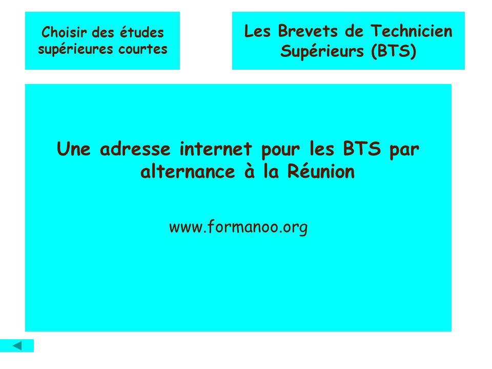 Choisir des études supérieures courtes Les Brevets de Technicien Supérieurs (BTS) Une adresse internet pour les BTS par alternance à la Réunion www.fo