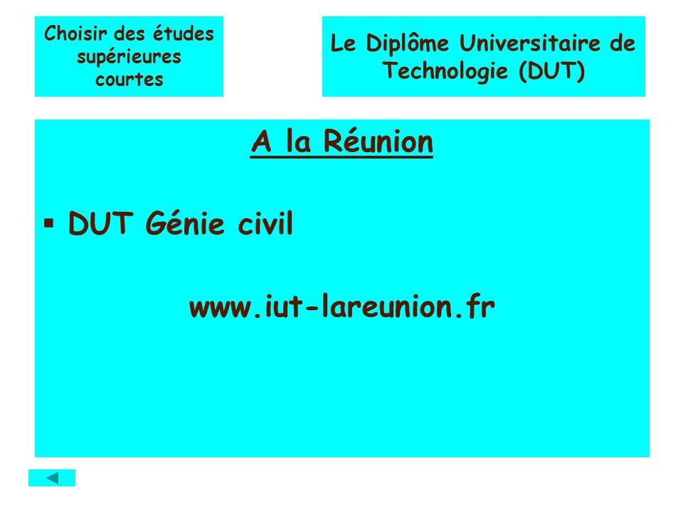 Choisir des études supérieures courtes A la Réunion DUT Génie civil www.iut-lareunion.fr Le Diplôme Universitaire de Technologie (DUT)