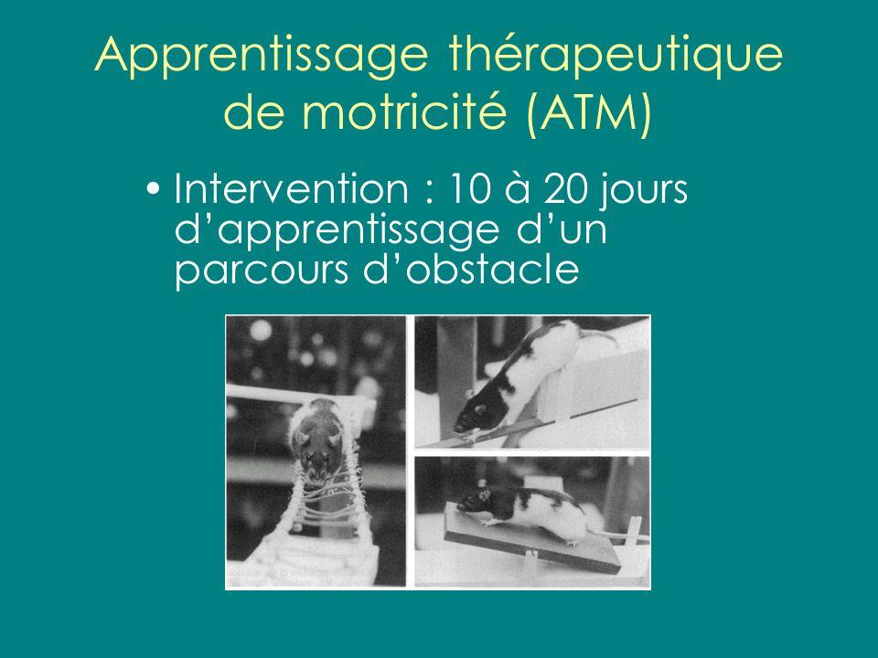 Apprentissage thérapeutique de motricité (ATM) Intervention : 10 à 20 jours dapprentissage dun parcours dobstacle