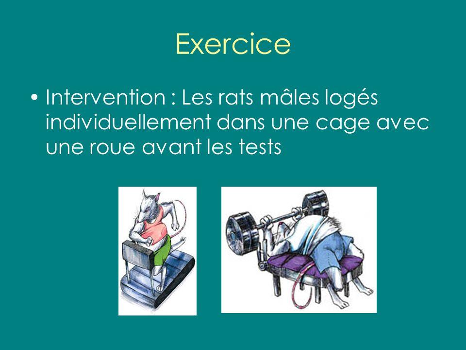 Exercice Intervention : Les rats mâles logés individuellement dans une cage avec une roue avant les tests