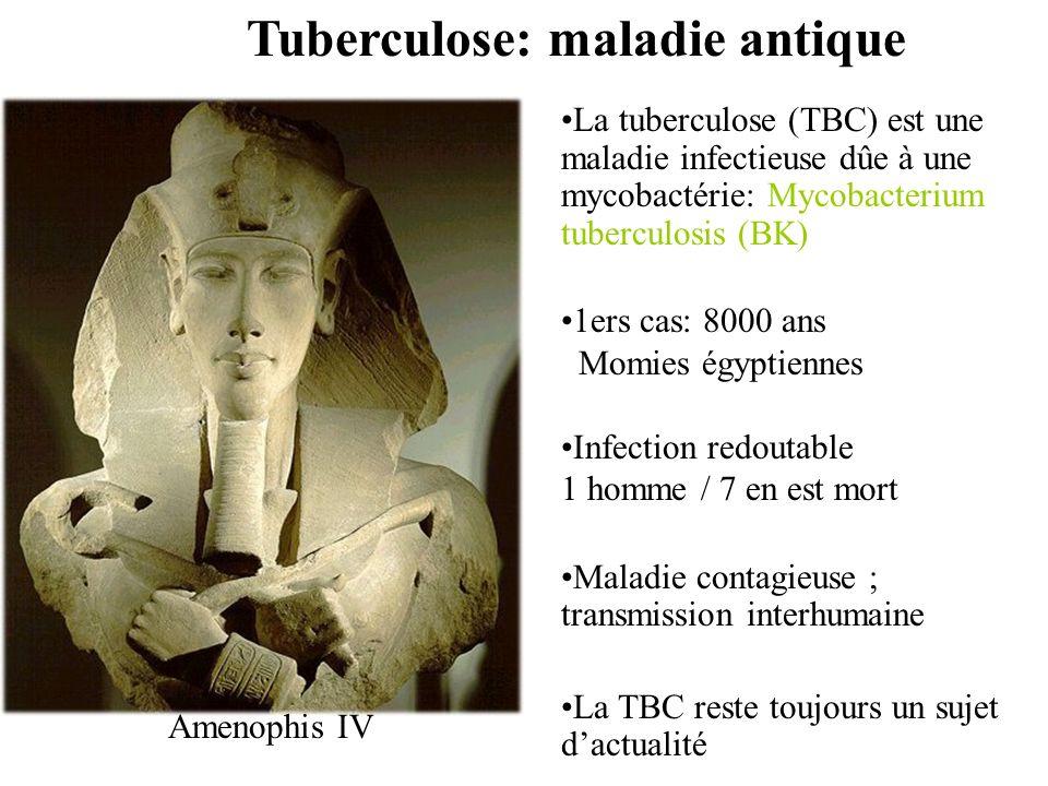 TUBERCULOSE: EPIDEMIOLOGIE ET METHODES DE DIAGNOSTIC CLASSIQUE Pr. L.SLIM-SAIDI Laboratoire de microbiologie Hôpital A.Mami de Pneumologie – Ariana -