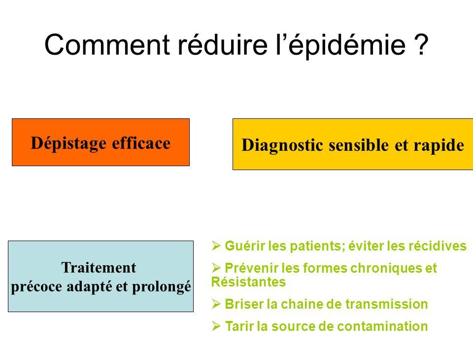 Comment réduire lépidémie ? Dépistage rapide des cas Traitement adéquat: Polychimiothérapie Mts actifs sur les 3 populations BK Monoprise et durée pro