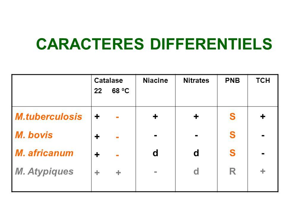 IDENTIFICATION Identification classique: 3 - 4 semaines Temps de croissance Morphologie des colonies pigmentation caractères biochimiques