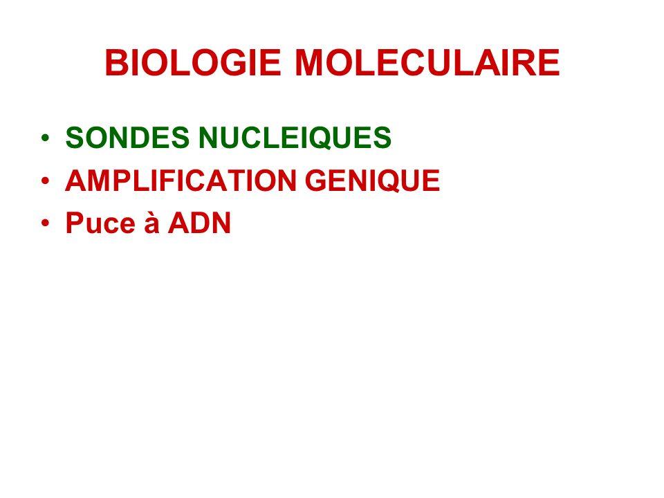 CONCLUSION Microscopie: outil de base dans la lutte anti-tuberculeuse Culture: Méthode de référence: souche; ATB; épidémiologie Test rapide et sensibl