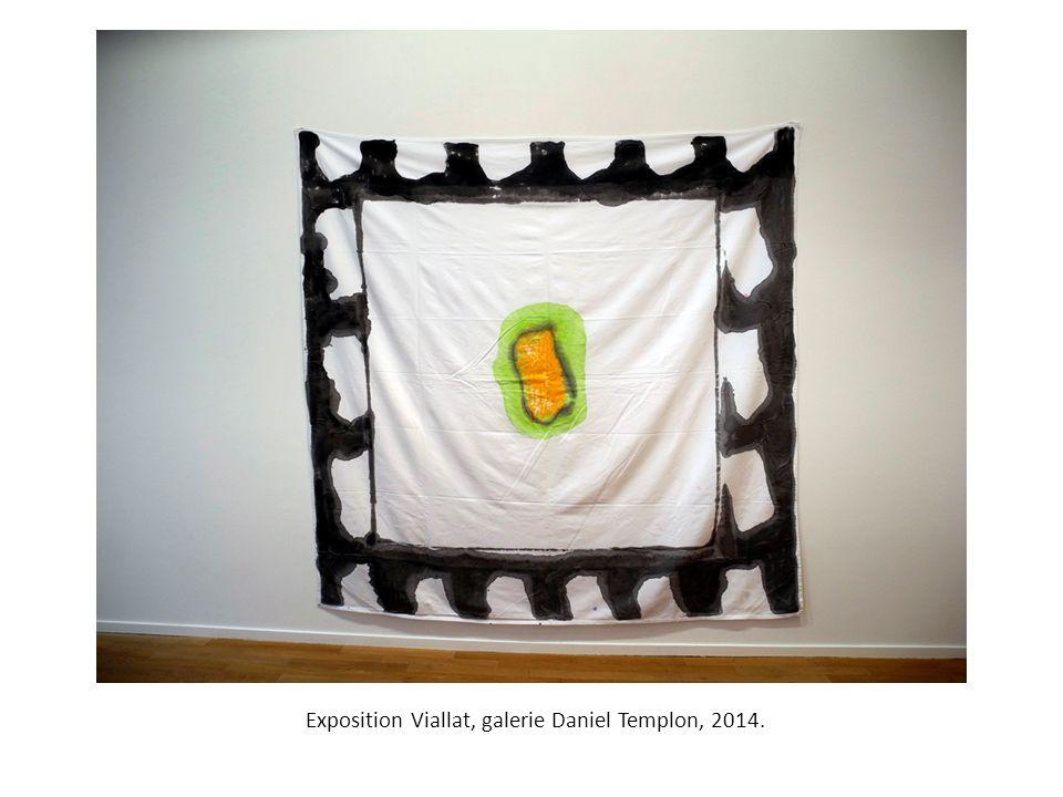 Exposition Viallat, galerie Daniel Templon, 2014.