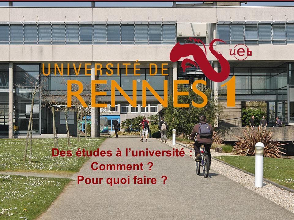 LUniversité de Rennes 1 26000 étudiants dont Sciences : 6500 Santé : 6400 Droit et Sciences pol : 5100 Sciences éco : 2700 IUT : 3900