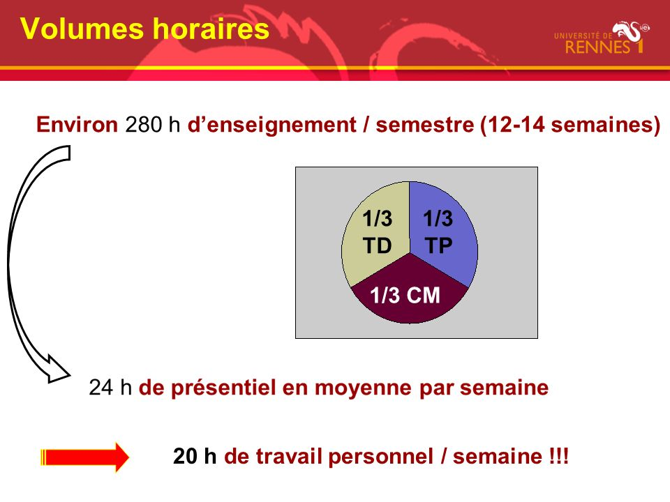 Environ 280 h denseignement / semestre (12-14 semaines) Volumes horaires 20 h de travail personnel / semaine !!! 1/3 TD 1/3 TP 1/3 CM