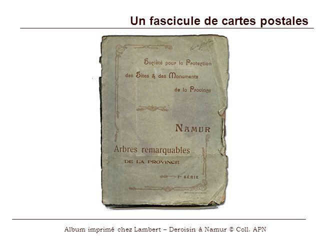 Un fascicule de cartes postales Album imprimé chez Lambert – Deroisin à Namur © Coll. APN
