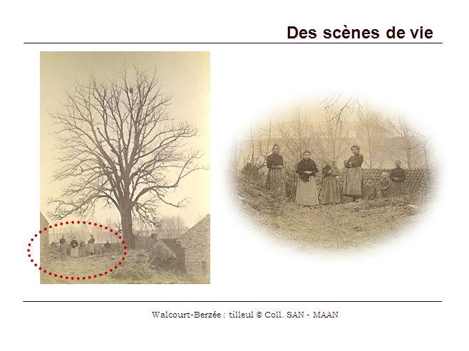 Des scènes de vie Walcourt-Berzée : tilleul © Coll. SAN - MAAN