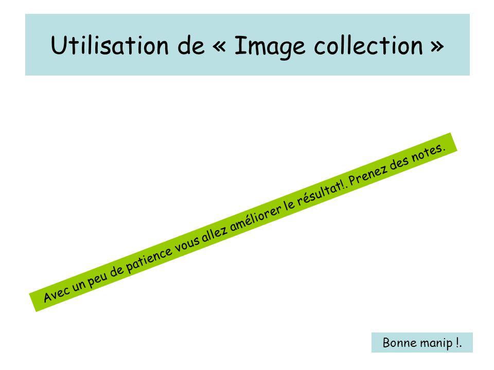 Utilisation de « Image collection » Avec un peu de patience vous allez améliorer le résultat!.