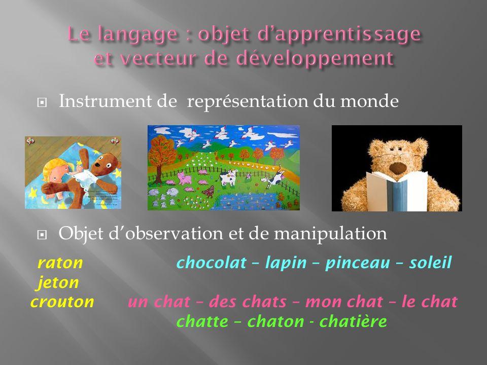 Instrument de représentation du monde Objet dobservation et de manipulation ratonchocolat – lapin – pinceau – soleil jeton croutonun chat – des chats – mon chat – le chat chatte – chaton - chatière