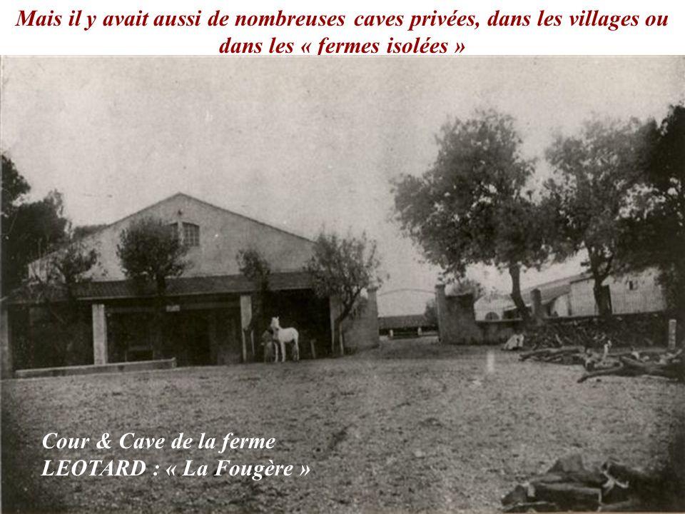 Mais il y avait aussi de nombreuses caves privées, dans les villages ou dans les « fermes isolées » Cour & Cave de la ferme LEOTARD : « La Fougère »