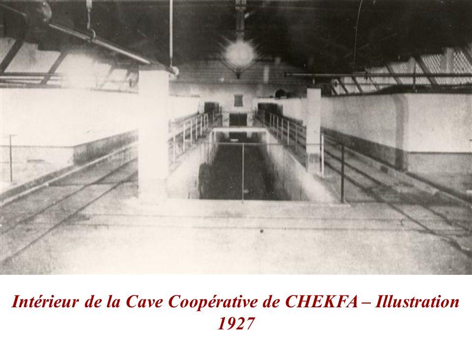 Intérieur de la Cave Coopérative de CHEKFA – Illustration 1927