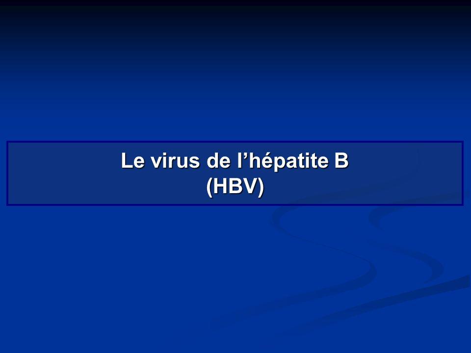 Le virus de lhépatite B (HBV)