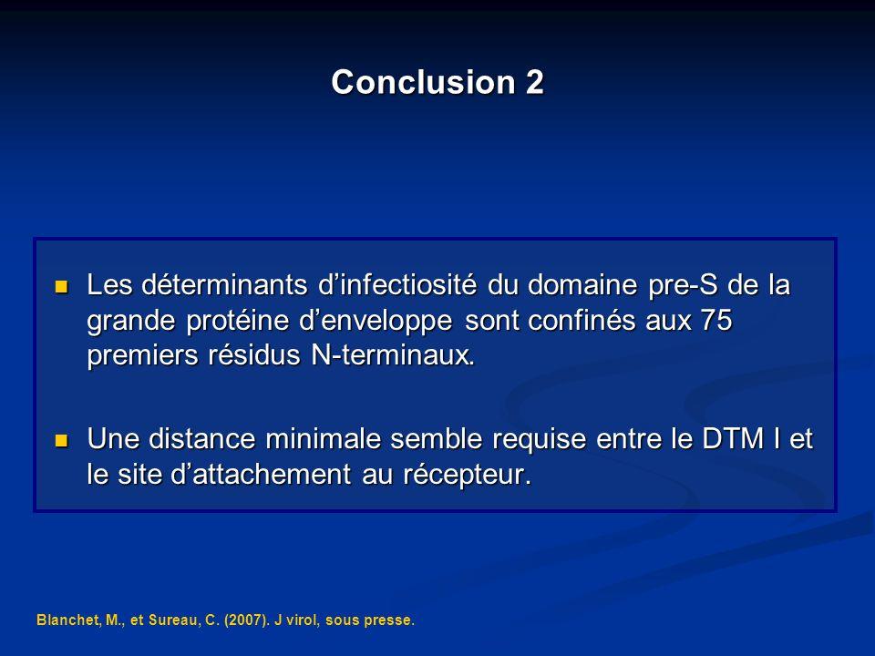 Conclusion 2 Les déterminants dinfectiosité du domaine pre-S de la grande protéine denveloppe sont confinés aux 75 premiers résidus N-terminaux. Les d