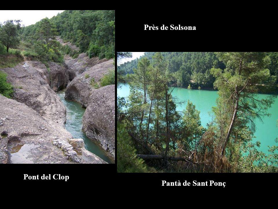 Pont del Clop Pantà de Sant Ponç Près de Solsona