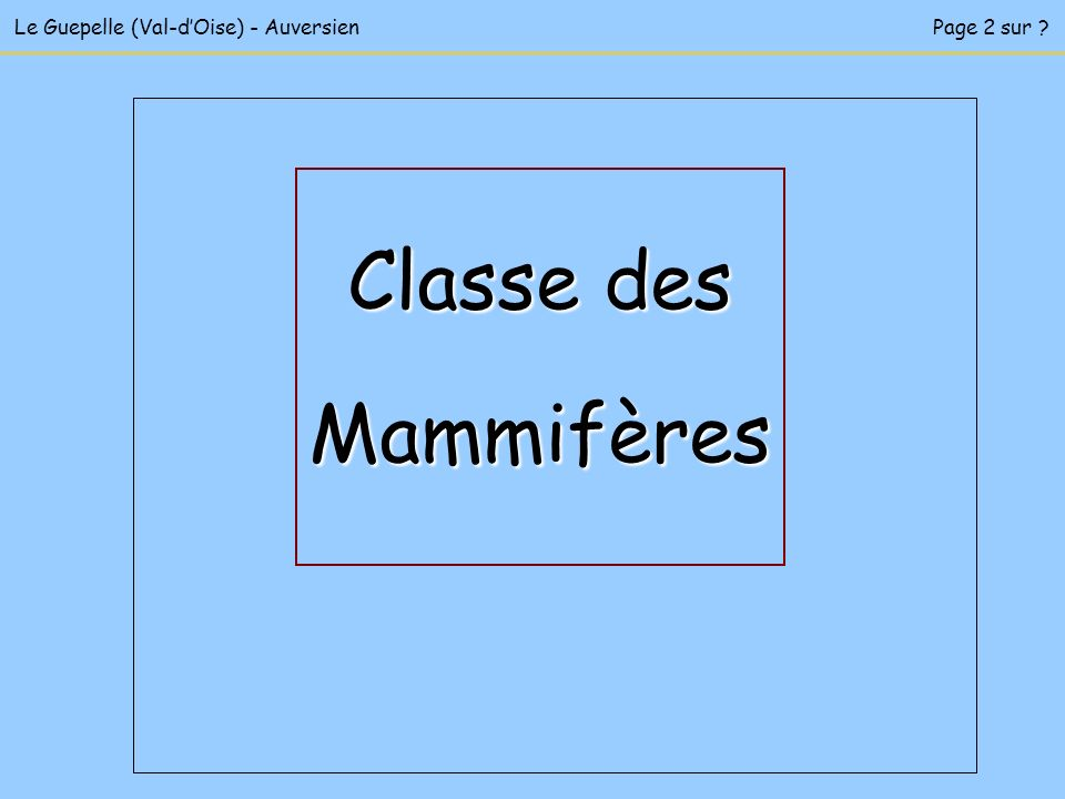 Le Guepelle (Val-dOise) - AuversienPage 2 sur ? Classe des Mammifères