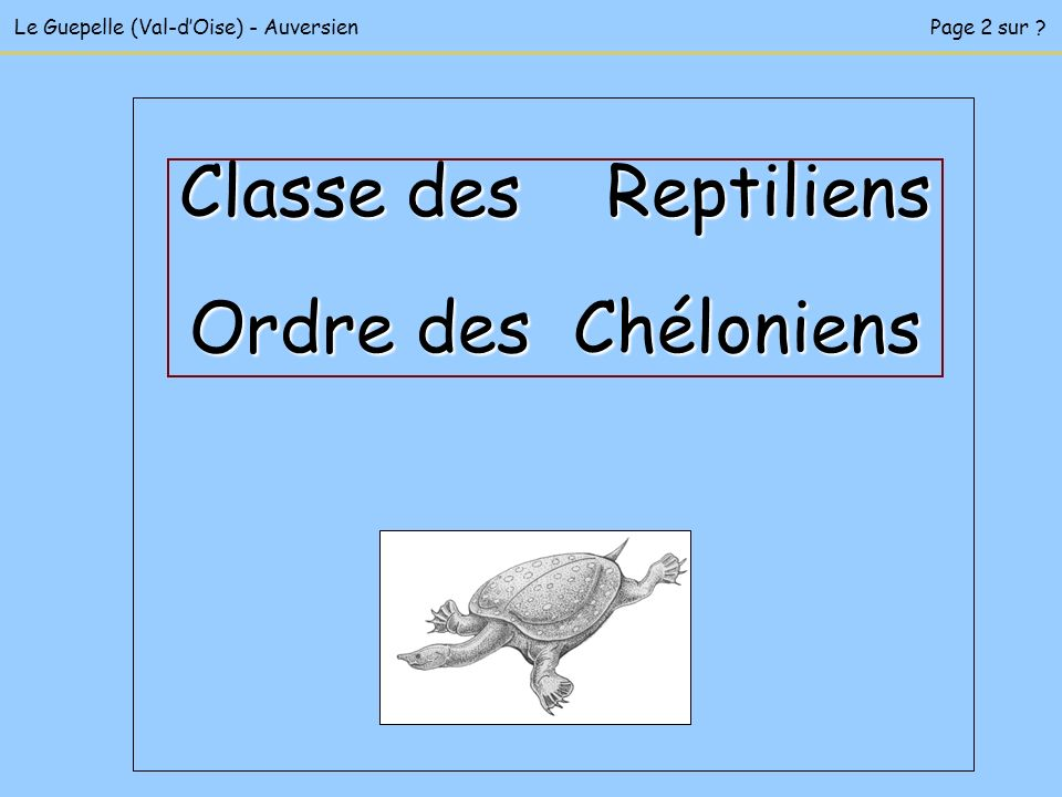 Le Guepelle (Val-dOise) - AuversienPage 2 sur ? Classe des Reptiliens Ordre des Chéloniens
