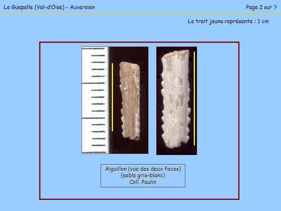 Le Guepelle (Val-dOise) - AuversienPage 2 sur .