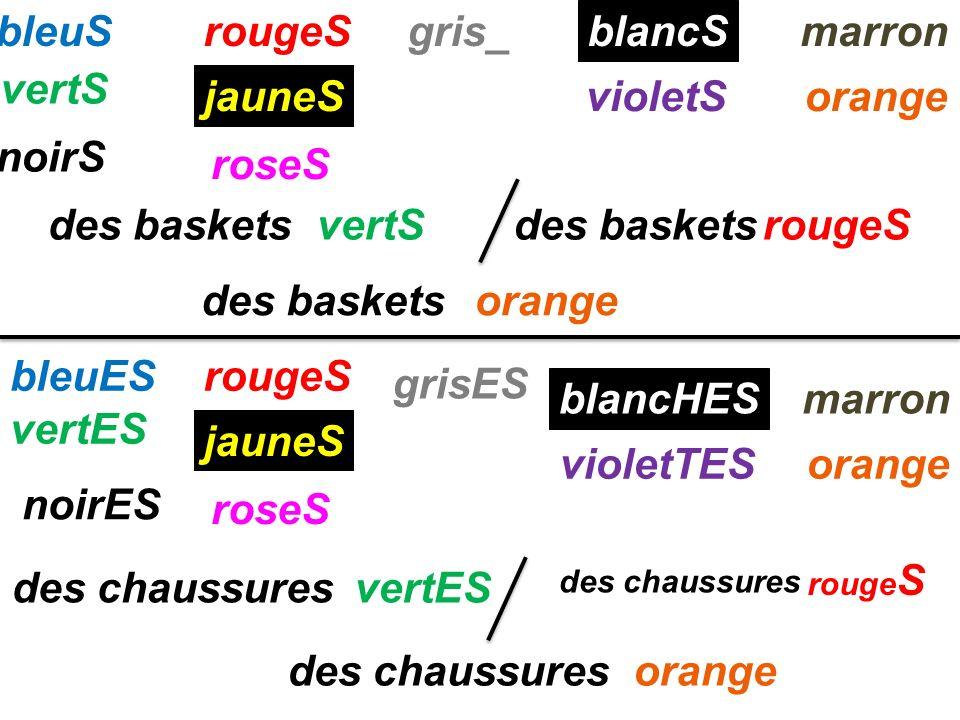 bleuSrougeSmarron jauneS vertS roseS noirS gris_ blancS violetSorange rougeS jauneS roseS rouge S bleuES vertES noirES vertES grisES blancHES violetTE
