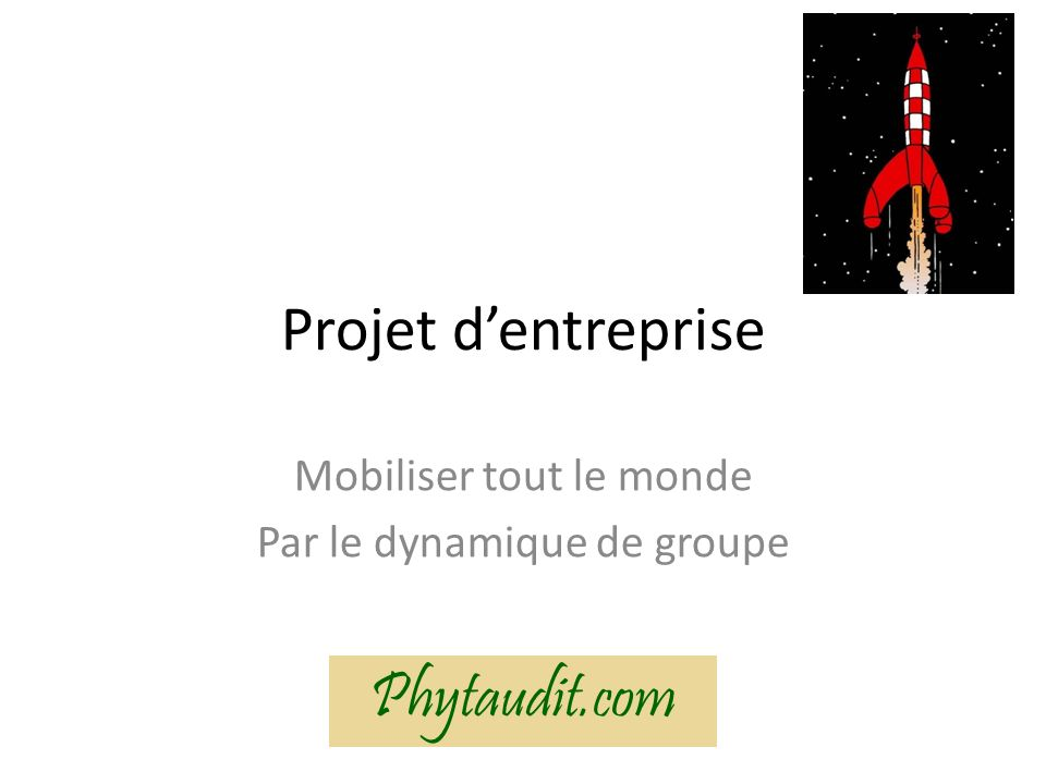 Projet dentreprise Mobiliser tout le monde Par le dynamique de groupe Phytaudit.com