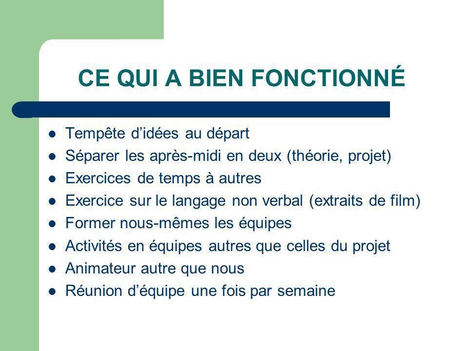 CE QUI A BIEN FONCTIONNÉ Tempête didées au départ Séparer les après-midi en deux (théorie, projet) Exercices de temps à autres Exercice sur le langage