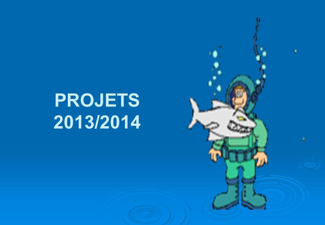 PROJETS 2013/2014