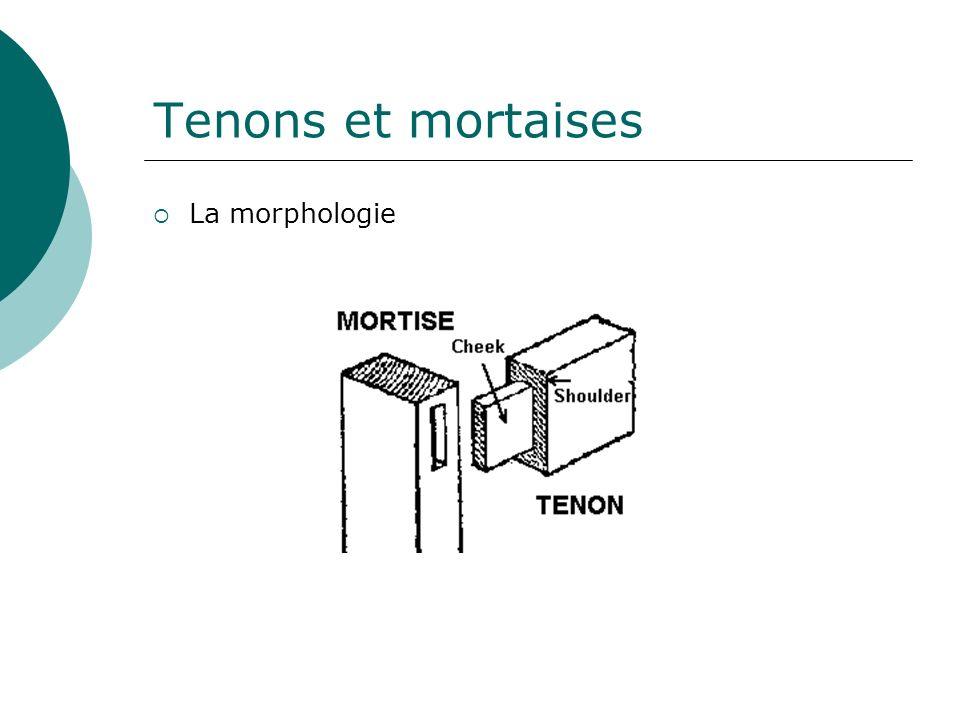 Tenons et mortaises La morphologie