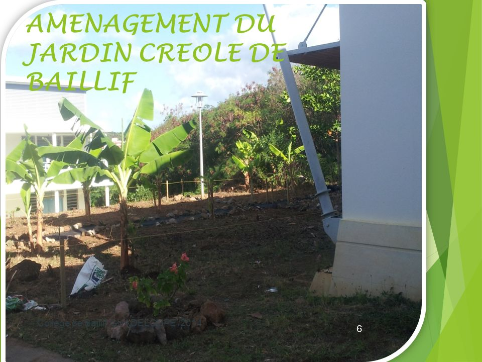 AMENAGEMENT DU JARDIN CREOLE DE BAILLIF Collège de Baillif GUADELOUPE /2014 6