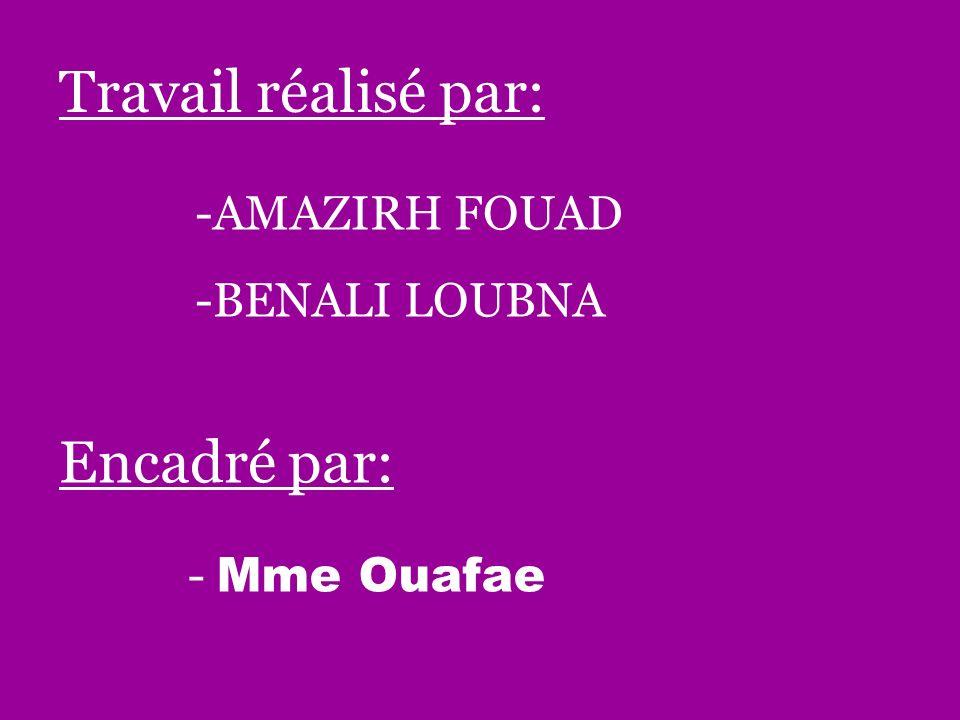 Travail réalisé par: -AMAZIRH FOUAD -BENALI LOUBNA Encadré par: - Mme Ouafae