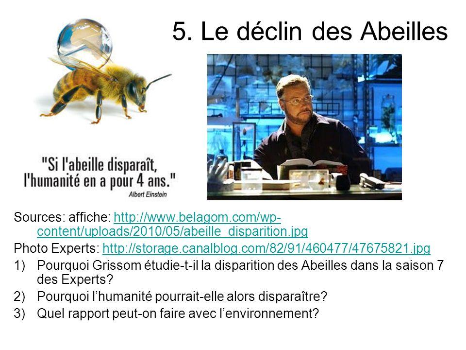 5. Le déclin des Abeilles Sources: affiche: http://www.belagom.com/wp- content/uploads/2010/05/abeille_disparition.jpghttp://www.belagom.com/wp- conte