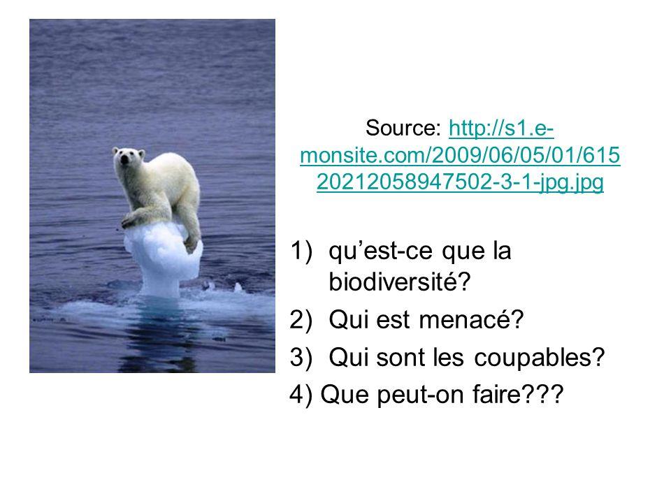 Source: http://s1.e- monsite.com/2009/06/05/01/615 20212058947502-3-1-jpg.jpghttp://s1.e- monsite.com/2009/06/05/01/615 20212058947502-3-1-jpg.jpg 1)quest-ce que la biodiversité.