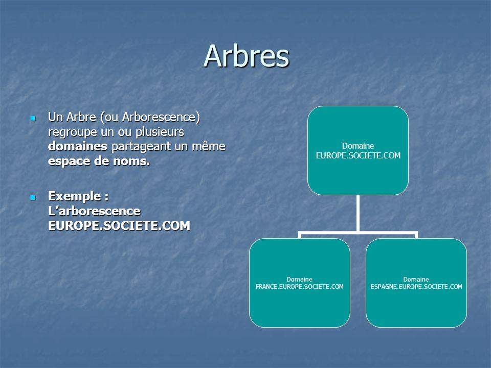 Arbres Un Arbre (ou Arborescence) regroupe un ou plusieurs domaines partageant un même espace de noms. Un Arbre (ou Arborescence) regroupe un ou plusi