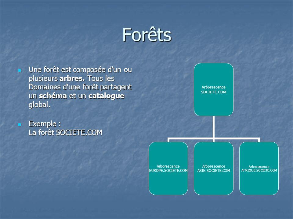 Forêts Une forêt est composée d'un ou plusieurs arbres. Tous les Domaines d'une forêt partagent un schéma et un catalogue global. Une forêt est compos