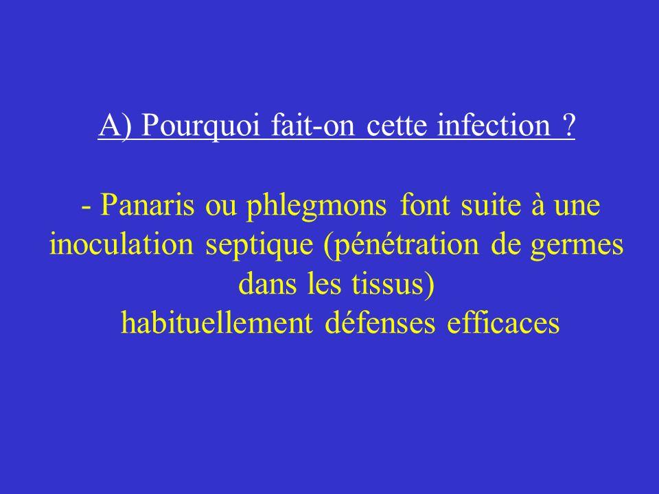 A) Pourquoi fait-on cette infection ? - Panaris ou phlegmons font suite à une inoculation septique (pénétration de germes dans les tissus) habituellem