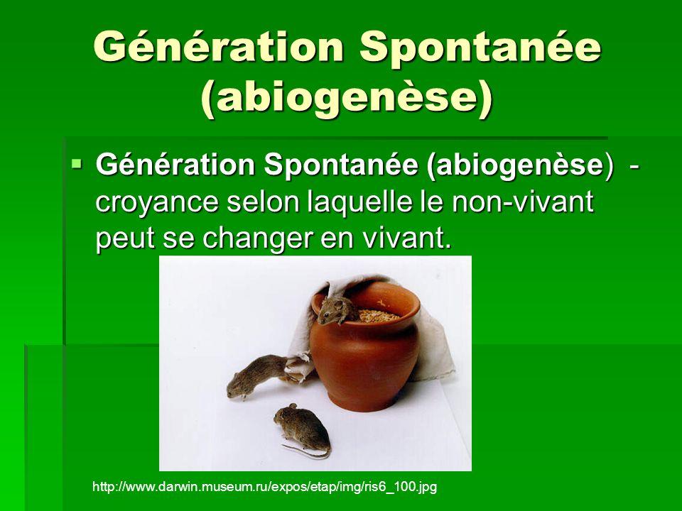 Génération Spontanée (abiogenèse) Génération Spontanée (abiogenèse) - croyance selon laquelle le non-vivant peut se changer en vivant. Génération Spon
