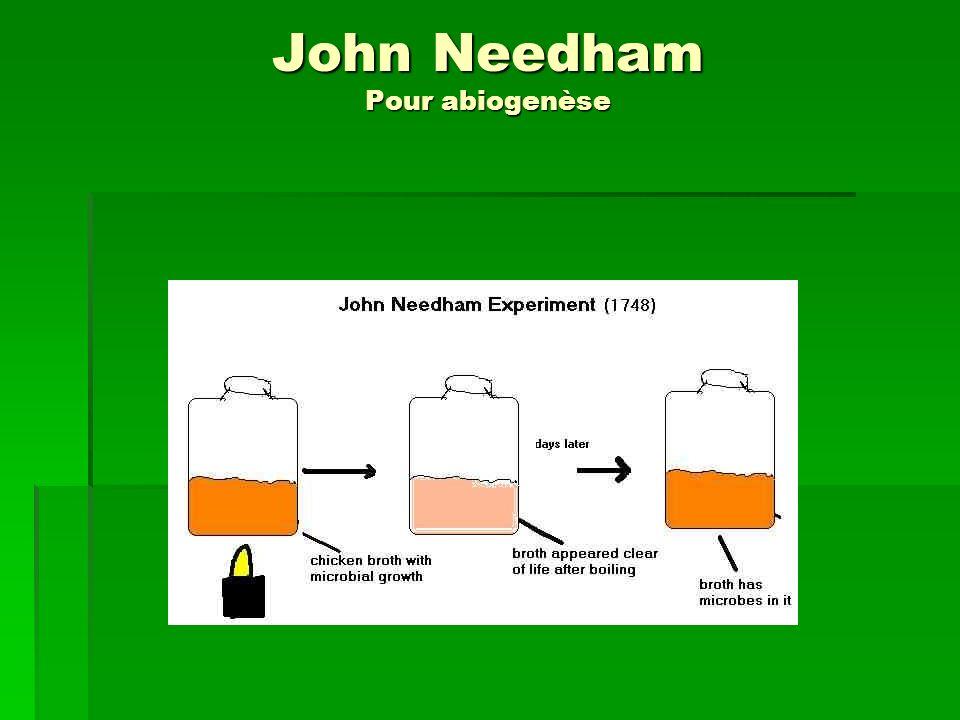 John Needham Pour abiogenèse