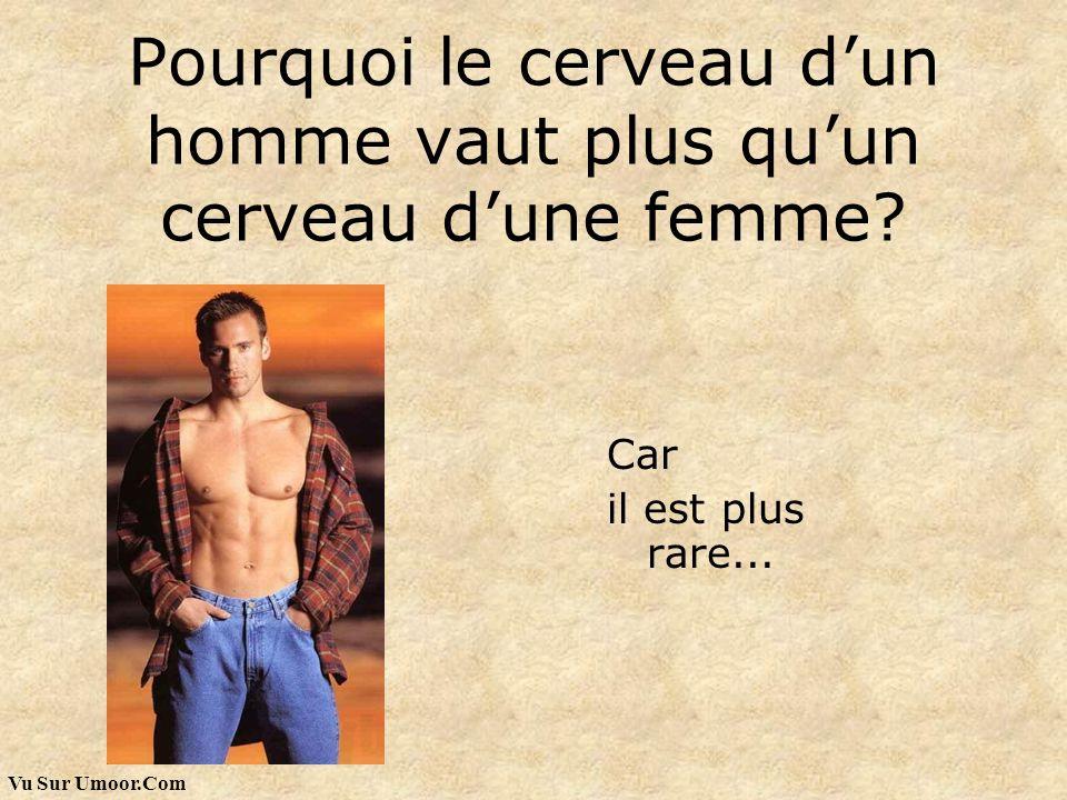 Vu Sur Umoor.Com Pourquoi le cerveau dun homme vaut plus quun cerveau dune femme? Car il est plus rare...