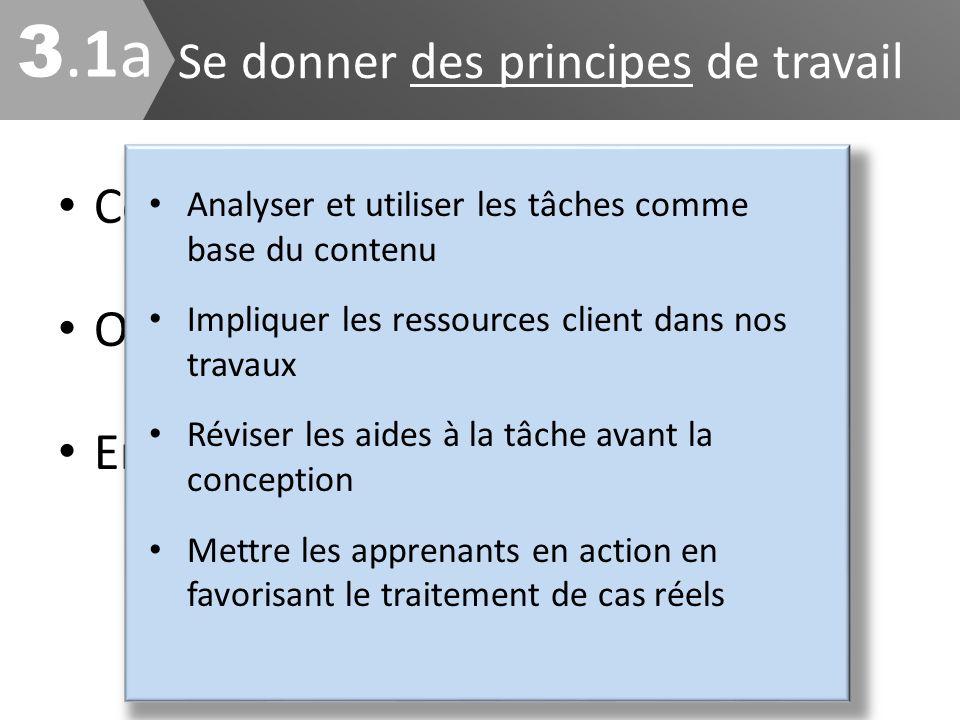 Concrétiser la vision Orienter les stratégies Encadrer le développement Se donner des principes de travail 3.1a3.1a Analyser et utiliser les tâches co