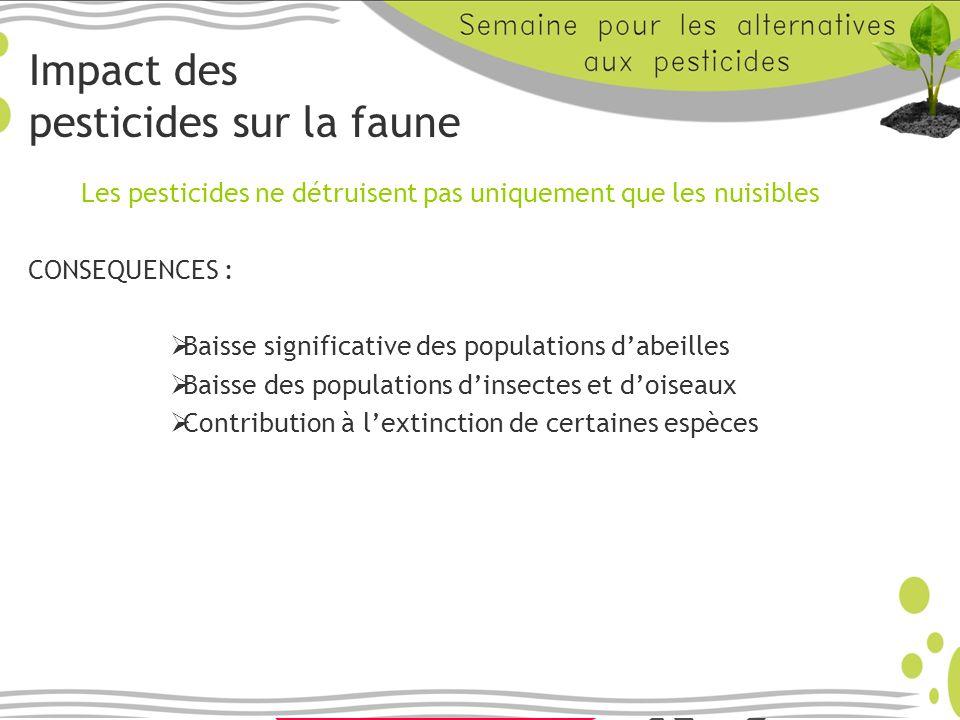 Impact des pesticides sur la faune Les pesticides ne détruisent pas uniquement que les nuisibles CONSEQUENCES : Baisse significative des populations d