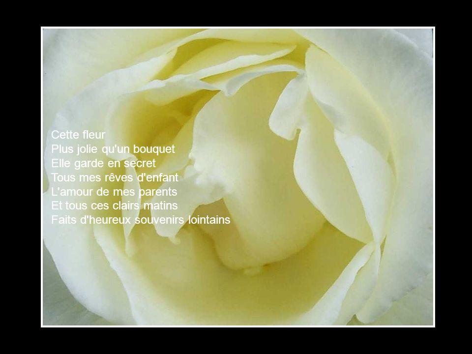 Jai caché Mieux que partout ailleurs Au jardin de mon cœur Une petite fleur