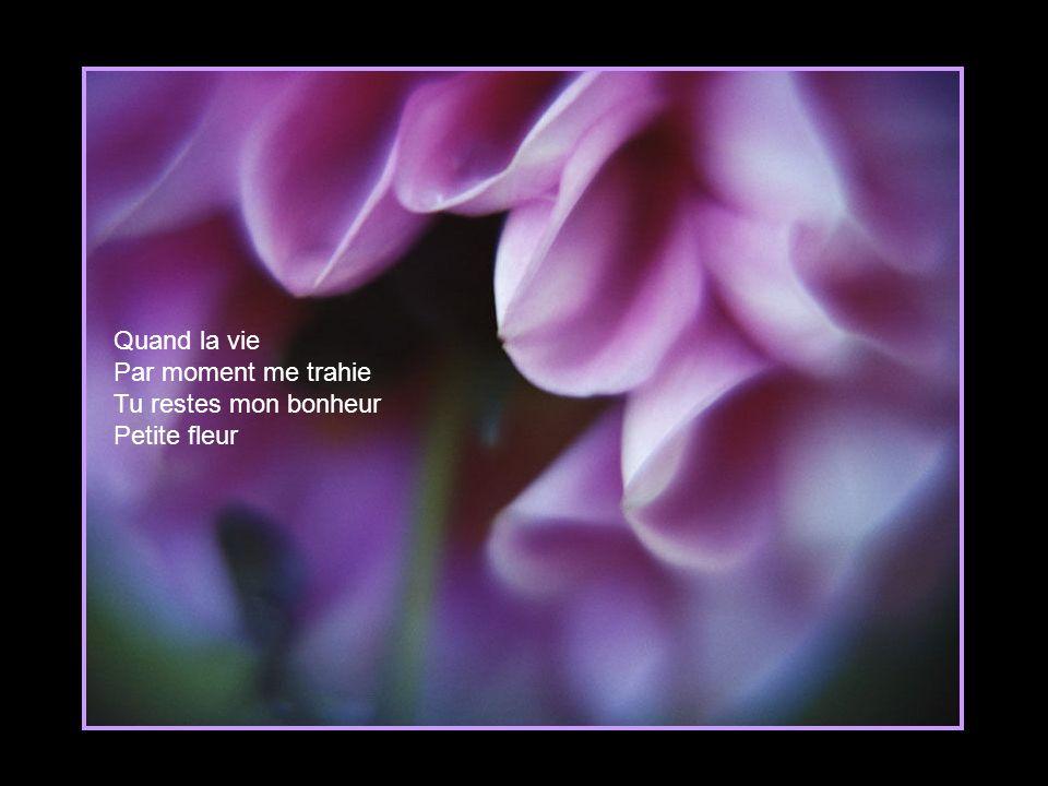 Cette fleur Plus jolie qu un bouquet Elle garde en secret Tous mes rêves d enfant L amour de mes parents Et tous ces clairs matins Faits d heureux souvenirs lointains
