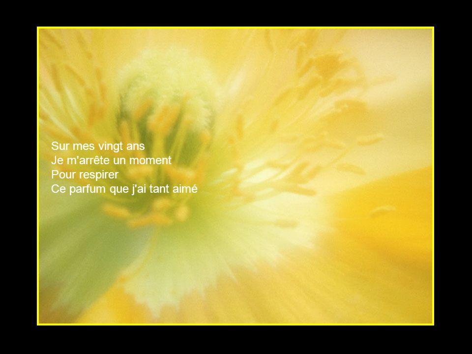 Quand la vie Par moment me trahie Tu restes mon bonheur Petite fleur
