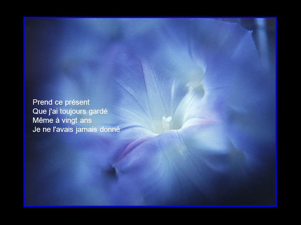 Dans mon cœur Tu fleuriras toujours Au grand jardin d amour Petite fleur