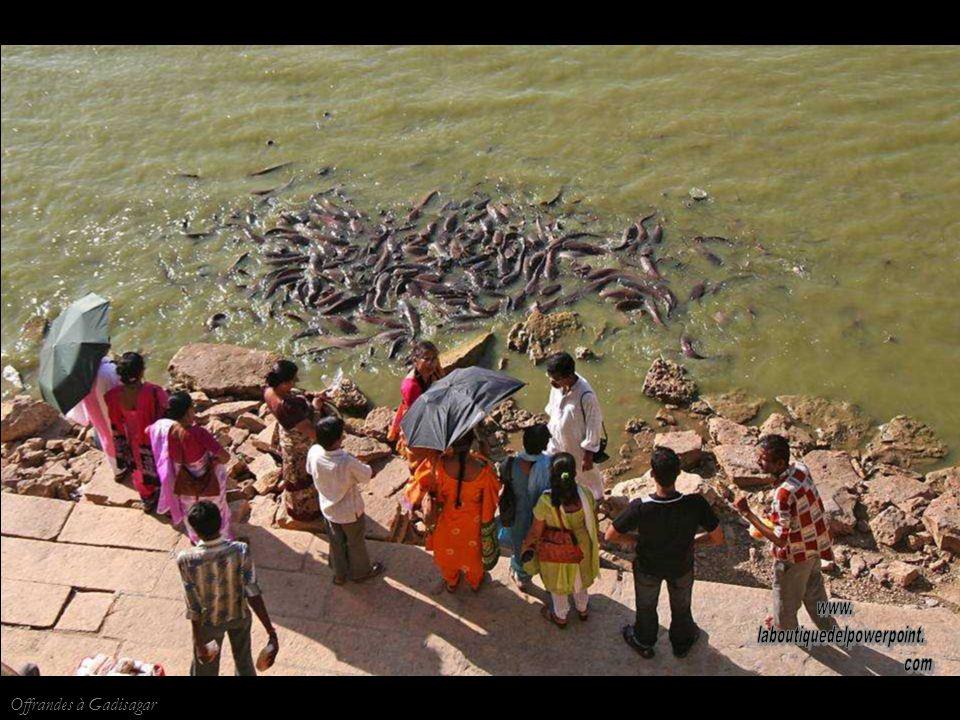 Jaisalmer Musicien près du lac de Gadisagar
