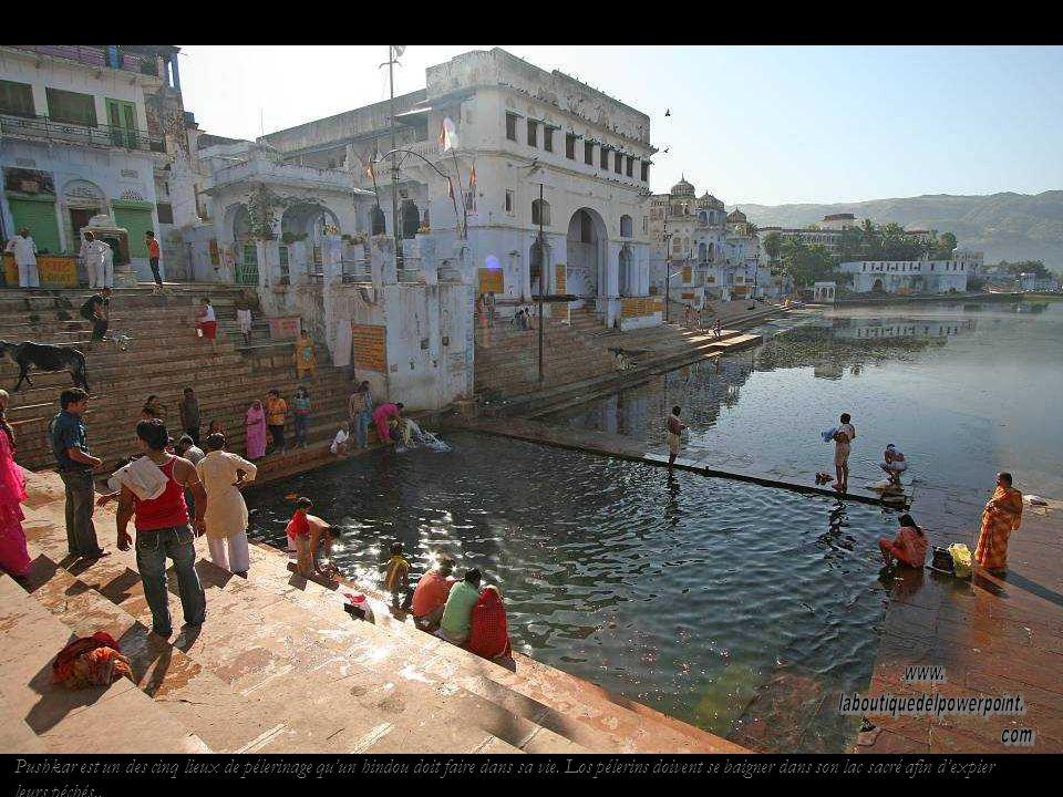 Pushkar, un oasis dans le désert du Thar. Le lac sacré de Pushkar sest formé à partir de quelques pétales tombés de la main de Brahma.