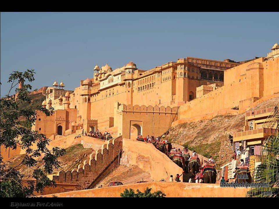 Jaipur. El Jal Mahal (palais de leau) paraît flotter sur leau lorsque la mousson remplit le lac Man Sagar.