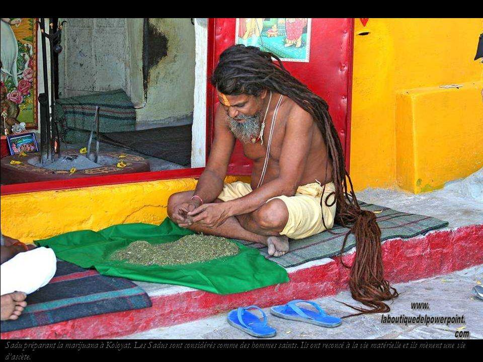 Sadu préparant la marijuana à Koloyat.Les Sadus sont considérés comme des hommes saints.