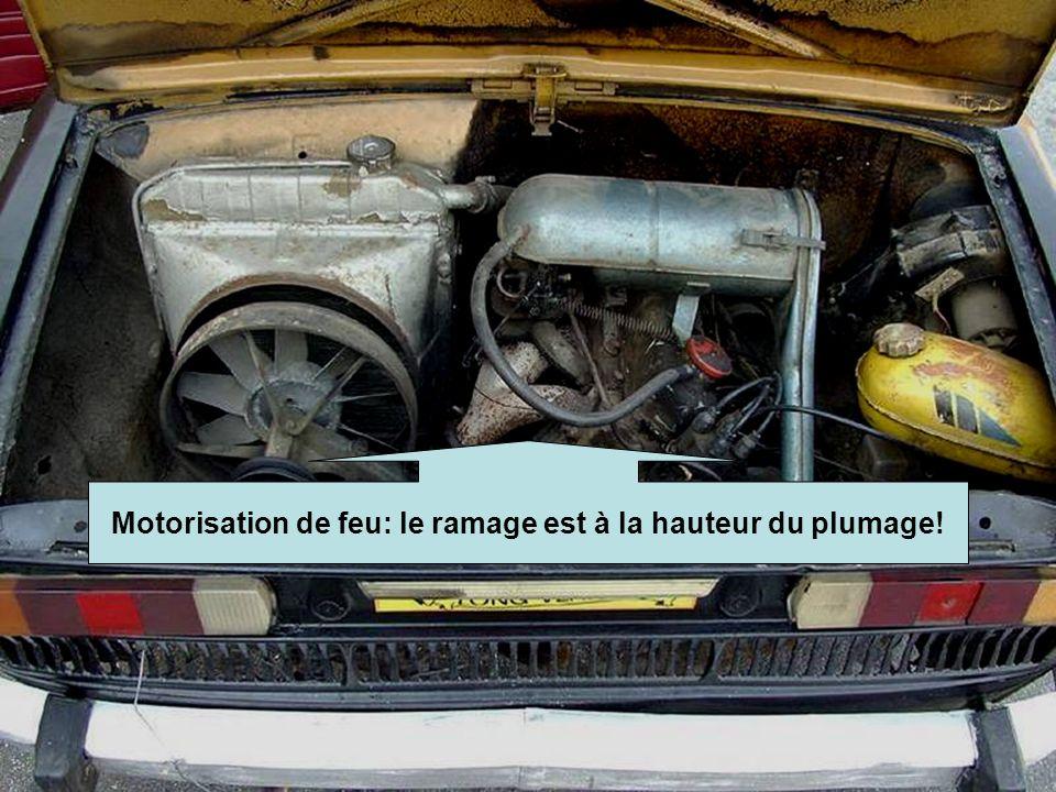 Diaporamas-a-la-con Motorisation de feu: le ramage est à la hauteur du plumage!